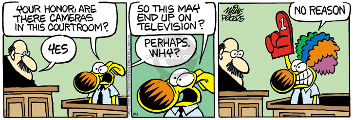 Comic Strip Mike Peters  Mother Goose and Grimm 2014-09-03 television news