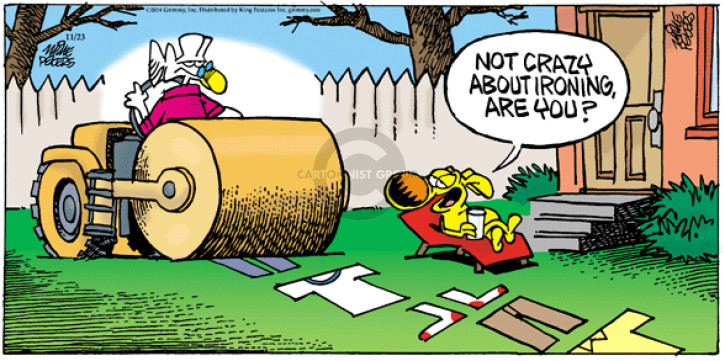Comic Strip Mike Peters  Mother Goose and Grimm 2014-11-23 housekeeping