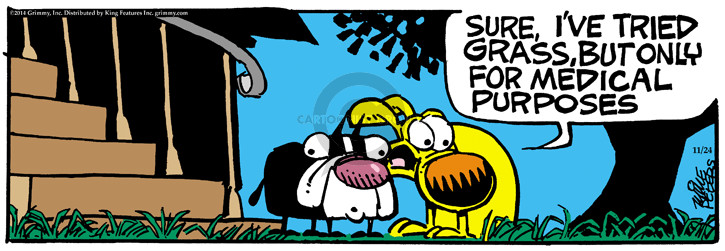 Cartoonist Mike Peters  Mother Goose and Grimm 2014-11-24 weed