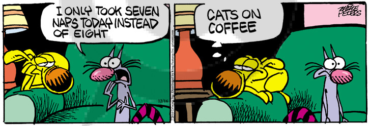 Comic Strip Mike Peters  Mother Goose and Grimm 2014-12-16 coffee