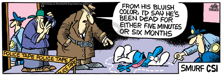 Comic Strip Mike Peters  Mother Goose and Grimm 2015-01-01 detect