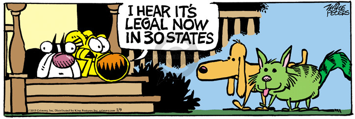 Comic Strip Mike Peters  Mother Goose and Grimm 2015-01-09 law