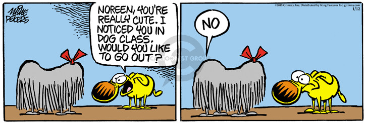 Comic Strip Mike Peters  Mother Goose and Grimm 2015-01-12 hair
