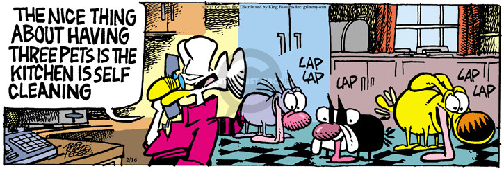 Comic Strip Mike Peters  Mother Goose and Grimm 2015-02-16 self-cleaning