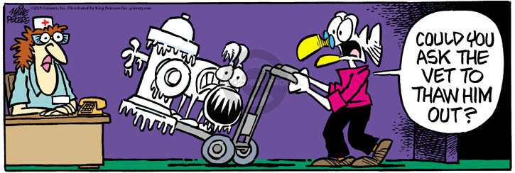 Comic Strip Mike Peters  Mother Goose and Grimm 2015-03-09 cold