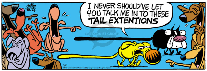 I never shouldve let you take me in to these tail extensions.