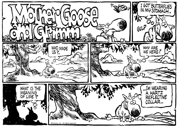Comic Strip Mike Peters  Mother Goose and Grimm 1985-04-28 stomach