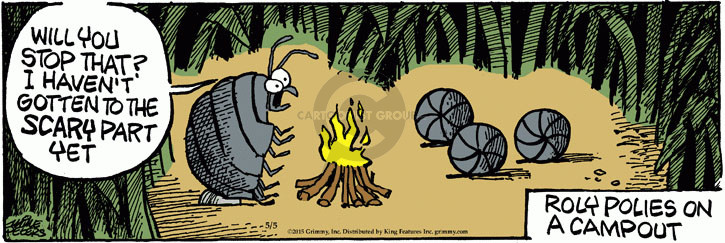 Comic Strip Mike Peters  Mother Goose and Grimm 2015-05-05 camping