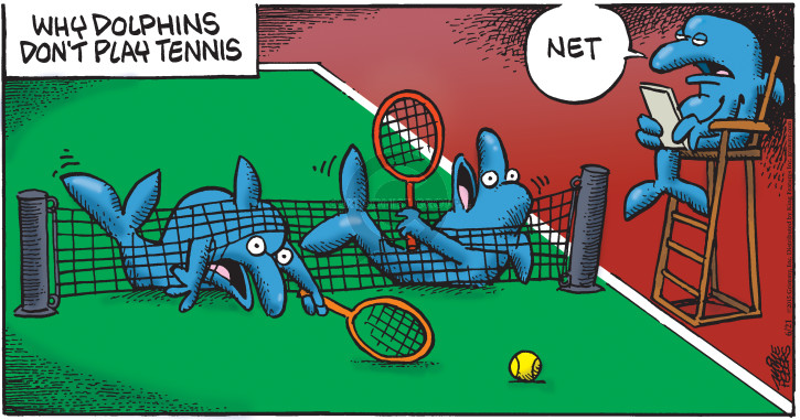 Why dolphins dont play tennis. Net.