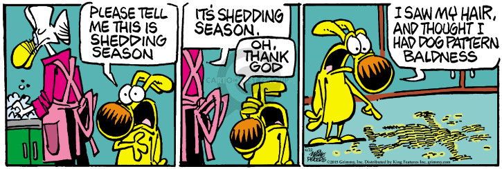Cartoonist Mike Peters  Mother Goose and Grimm 2015-06-22 fur