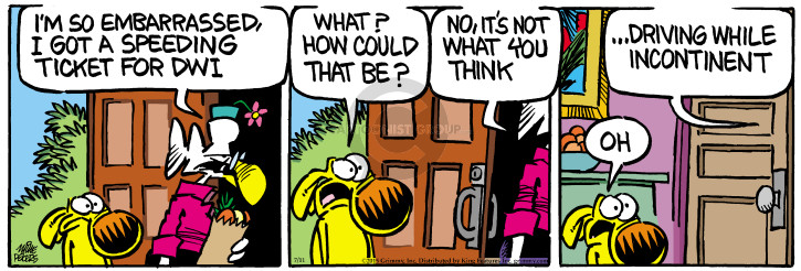 Comic Strip Mike Peters  Mother Goose and Grimm 2015-07-11 traffic