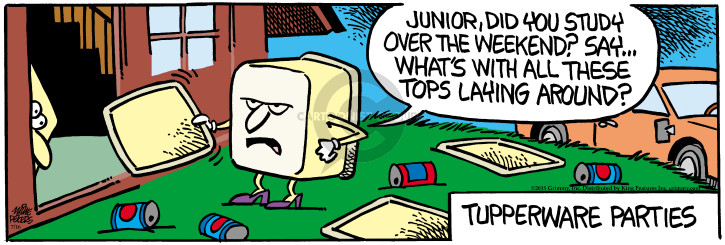 Comic Strip Mike Peters  Mother Goose and Grimm 2015-07-16 teenager