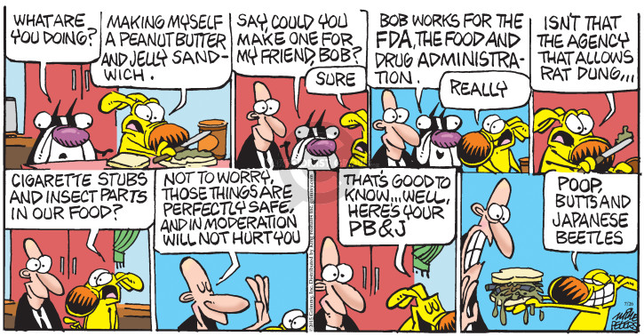 Comic Strip Mike Peters  Mother Goose and Grimm 2015-07-26 sandwich