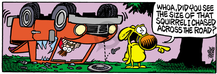 Cartoonist Mike Peters  Mother Goose and Grimm 2015-08-08 wreck