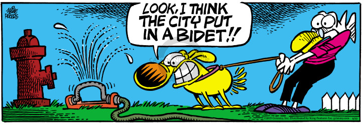 Comic Strip Mike Peters  Mother Goose and Grimm 2015-08-10 city