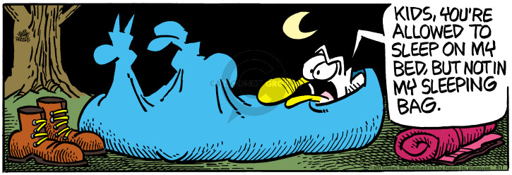 Comic Strip Mike Peters  Mother Goose and Grimm 2015-08-11 camping