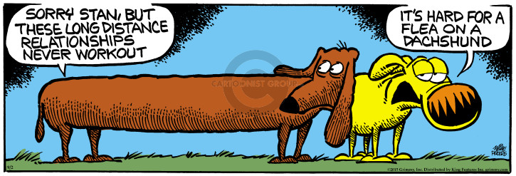 Sorry Stan, but these long distance relationships never workout. Its hard for a flea on a Dachshund.