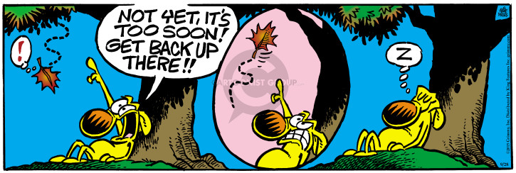 Comic Strip Mike Peters  Mother Goose and Grimm 2015-09-28 command