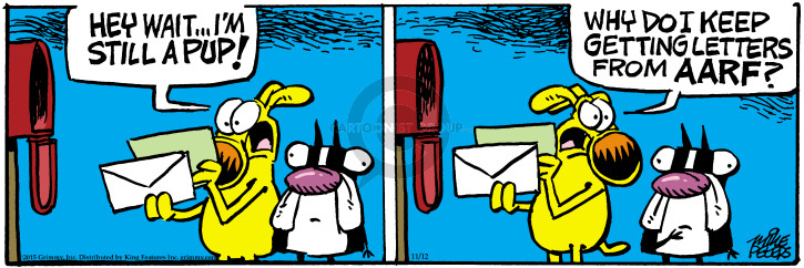 Comic Strip Mike Peters  Mother Goose and Grimm 2015-11-12 letter