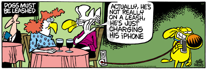 Comic Strip Mike Peters  Mother Goose and Grimm 2015-12-09 electronics