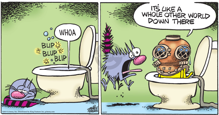 Comic Strip Mike Peters  Mother Goose and Grimm 2015-12-27 aquatic
