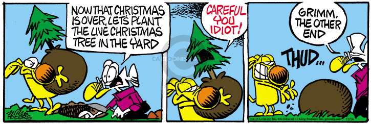 Comic Strip Mike Peters  Mother Goose and Grimm 2015-12-26 idiot