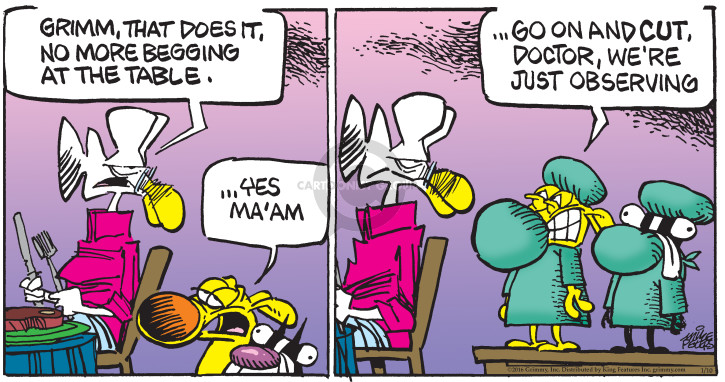Comic Strip Mike Peters  Mother Goose and Grimm 2016-01-10 surgery