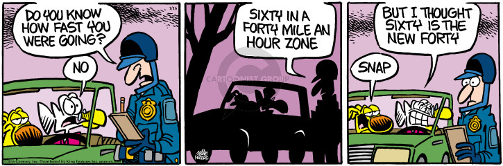 Comic Strip Mike Peters  Mother Goose and Grimm 2016-01-16 traffic