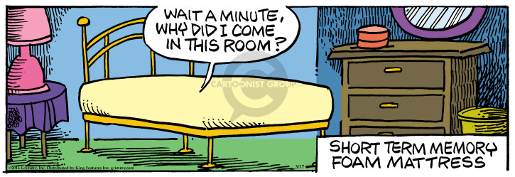 Comic Strip Mike Peters  Mother Goose and Grimm 2016-03-17 bedding