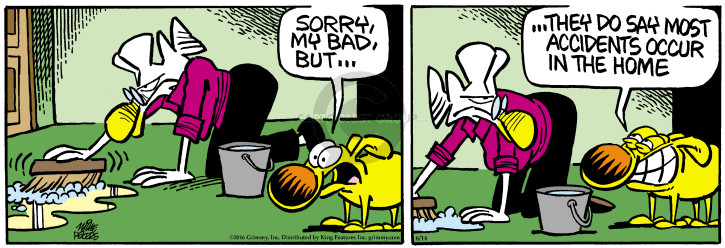 Comic Strip Mike Peters  Mother Goose and Grimm 2016-06-14 cleaning