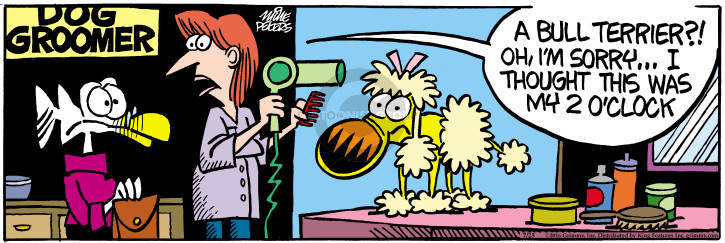 Comic Strip Mike Peters  Mother Goose and Grimm 2016-07-25 grooming