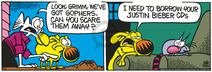 Comic Strip Mike Peters  Mother Goose and Grimm 2016-08-15 sound
