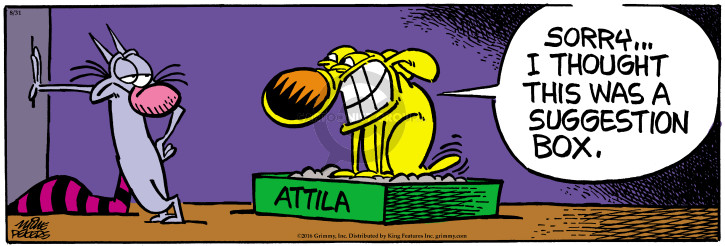 Comic Strip Mike Peters  Mother Goose and Grimm 2016-08-31 cat litter