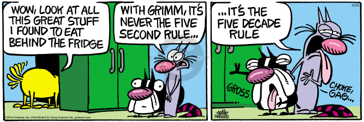 Comic Strip Mike Peters  Mother Goose and Grimm 2016-11-12 find