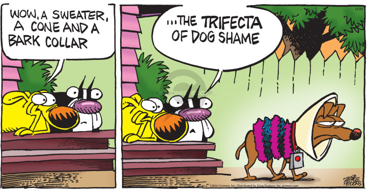 Cartoonist Mike Peters  Mother Goose and Grimm 2016-11-20 bark