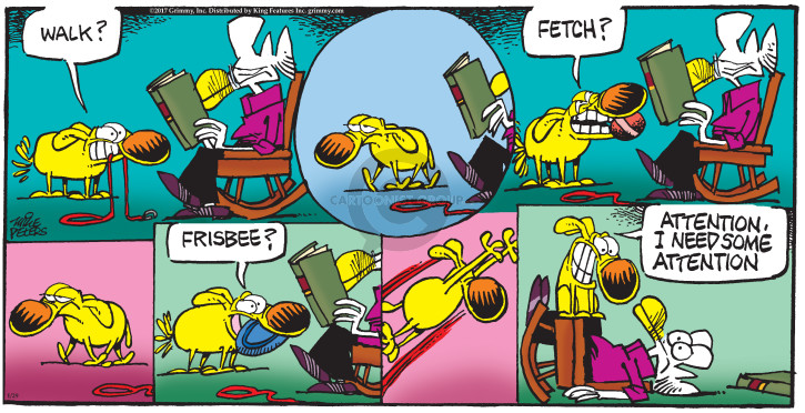 Comic Strip Mike Peters  Mother Goose and Grimm 2017-01-29 frisbee