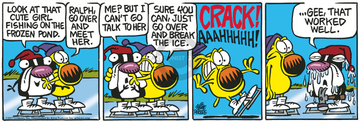 Comic Strip Mike Peters  Mother Goose and Grimm 2017-02-03 pond