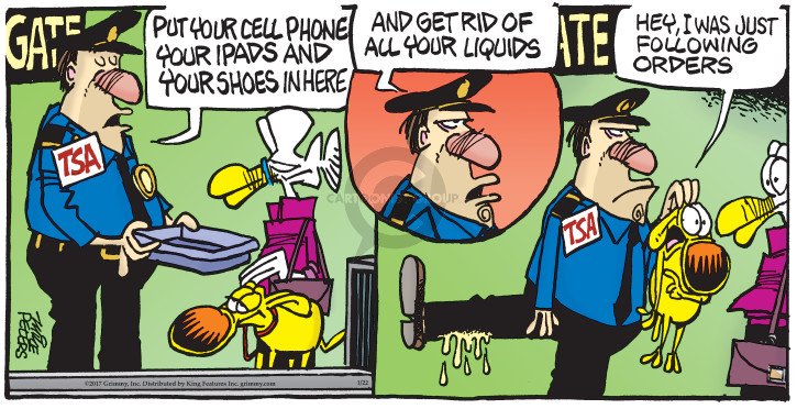 Comic Strip Mike Peters  Mother Goose and Grimm 2017-01-22 follow