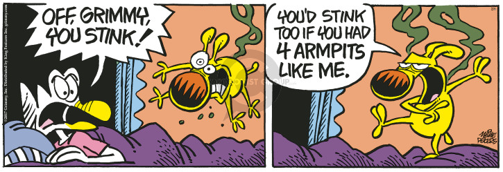 Comic Strip Mike Peters  Mother Goose and Grimm 2017-02-06 armpit