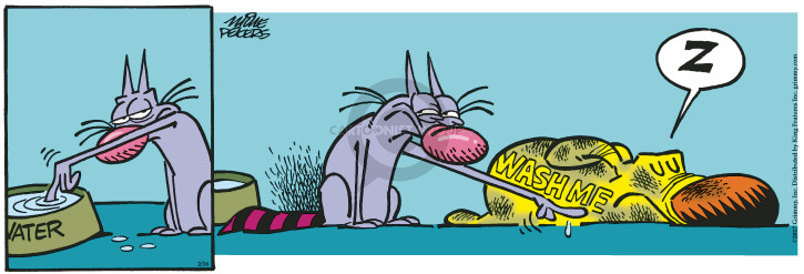Comic Strip Mike Peters  Mother Goose and Grimm 2017-02-16 bath