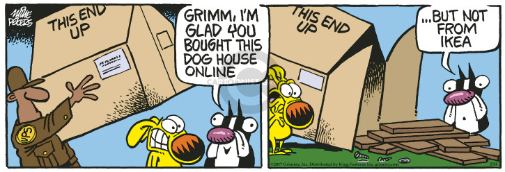 Comic Strip Mike Peters  Mother Goose and Grimm 2017-02-24 furniture