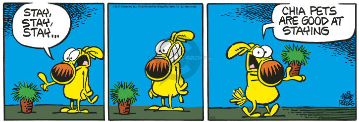 Comic Strip Mike Peters  Mother Goose and Grimm 2017-03-22 plant