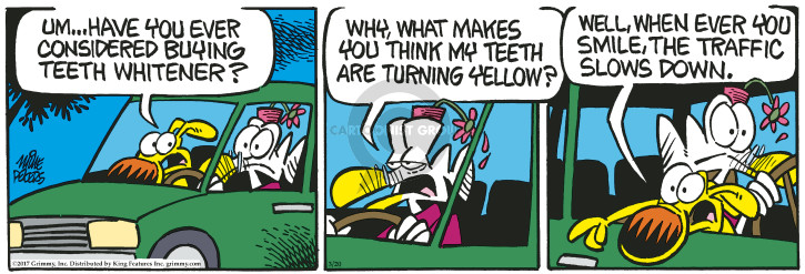 Comic Strip Mike Peters  Mother Goose and Grimm 2017-03-30 yellow