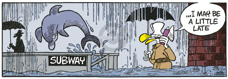 Comic Strip Mike Peters  Mother Goose and Grimm 2017-04-29 dolphin