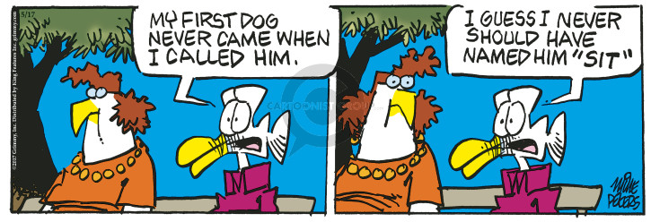 Comic Strip Mike Peters  Mother Goose and Grimm 2017-05-17 command