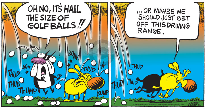 Comic Strip Mike Peters  Mother Goose and Grimm 2017-05-28 ball