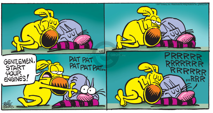 Comic Strip Mike Peters  Mother Goose and Grimm 2017-06-11 purr