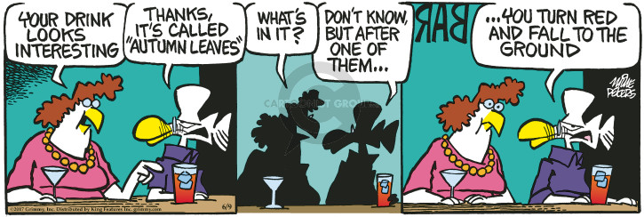 Comic Strip Mike Peters  Mother Goose and Grimm 2017-06-09 fall