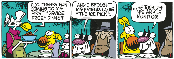 Comic Strip Mike Peters  Mother Goose and Grimm 2017-07-01 kid