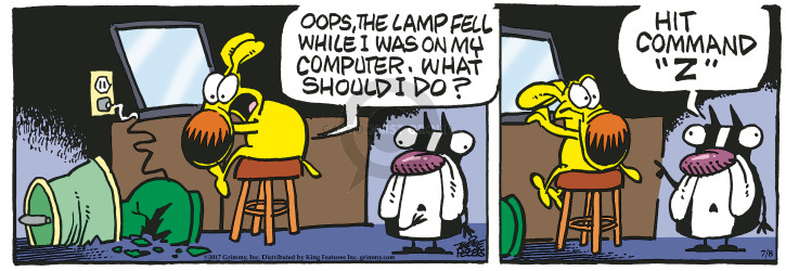 Cartoonist Mike Peters  Mother Goose and Grimm 2017-07-08 computer